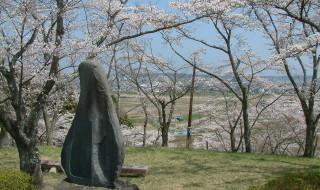 桜田山画像3